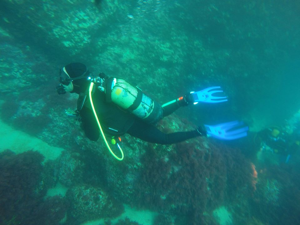 SABBE plongée 2015 06 Estartit (31)