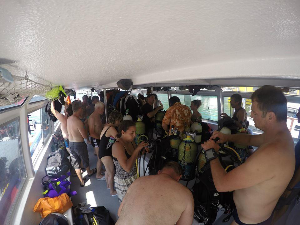SABBE plongée 2015 06 Estartit (39)