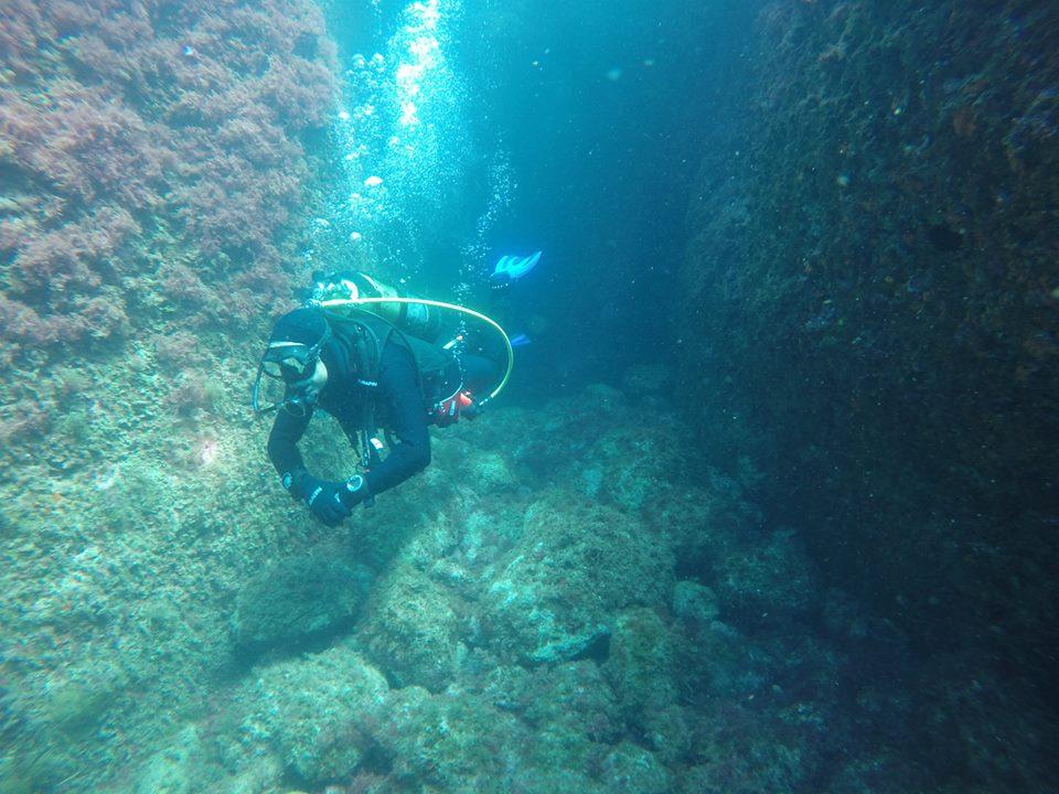 SABBE plongée 2015 06 Estartit (49)