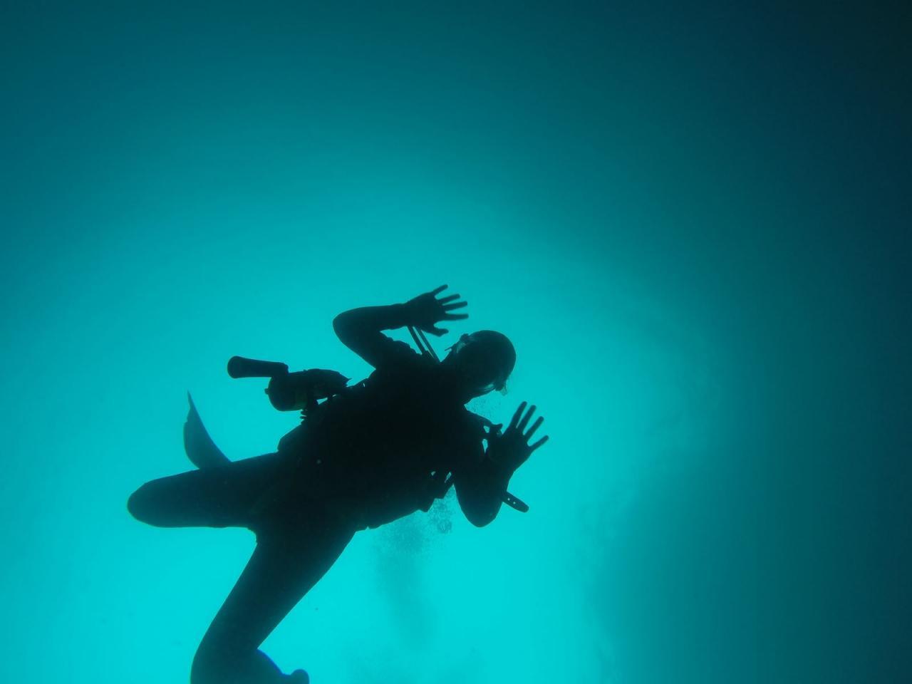 SABBE plongée Boé Bon Encontre 2014 (10)