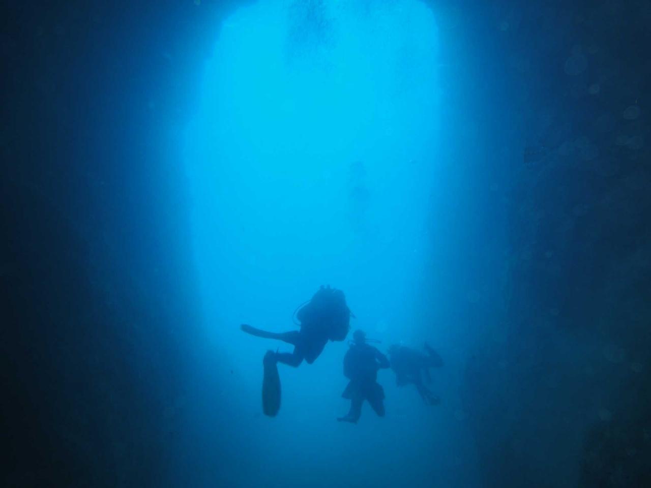Sabbe plongée Escala mai 2014 (25)