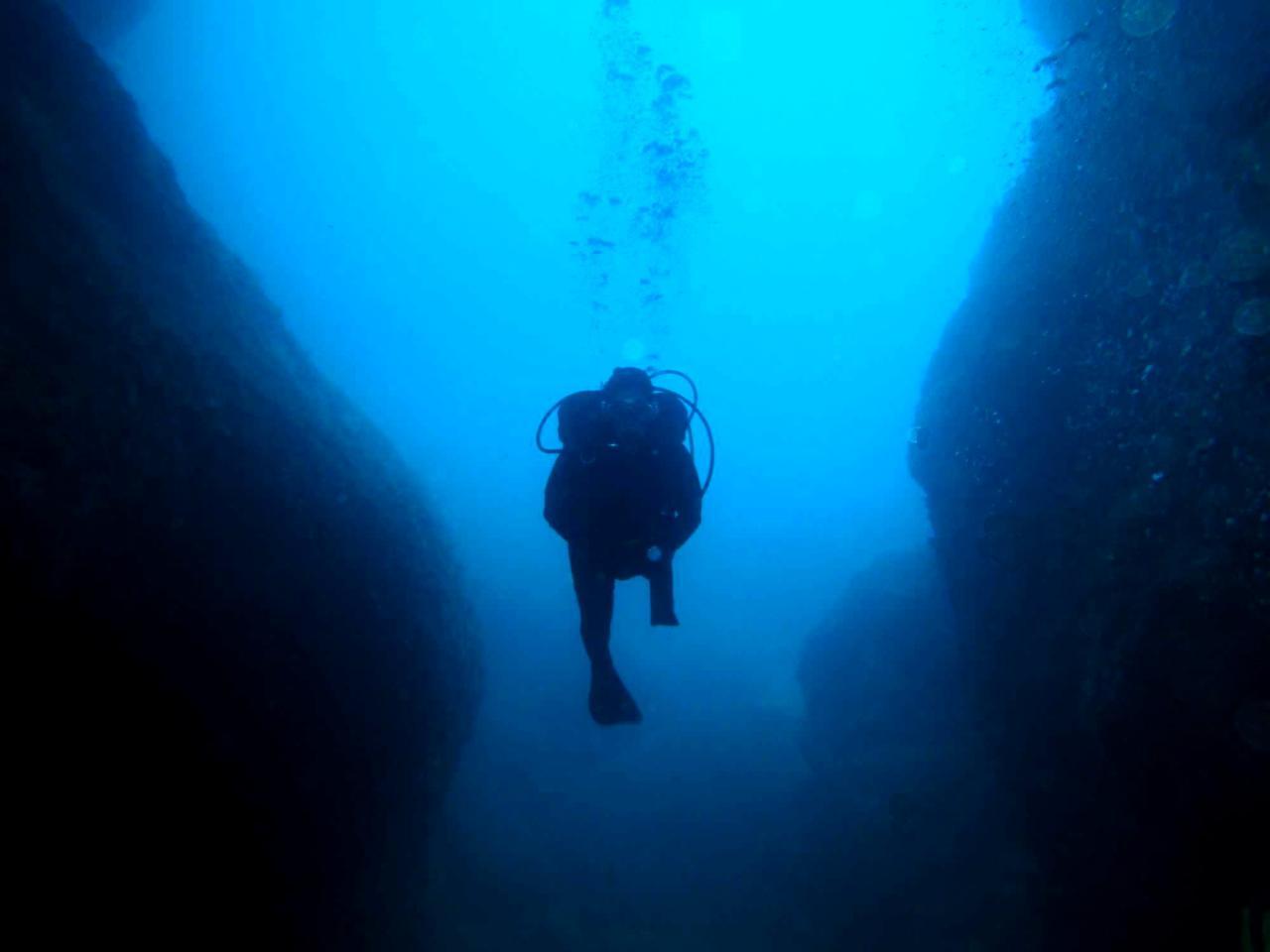 Sabbe plongée Escala mai 2014 (26)