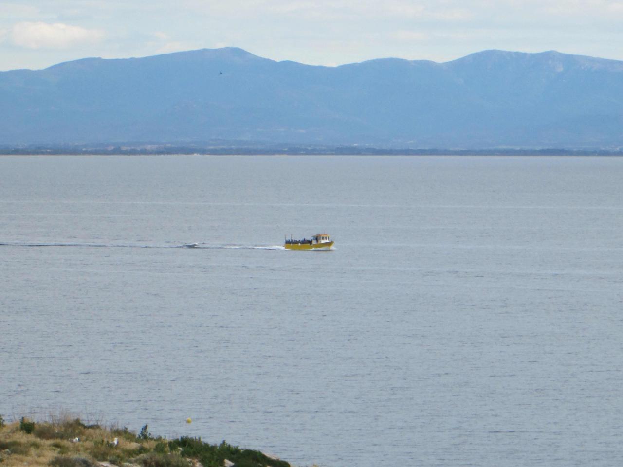 Sabbe plongée Escala mai 2014 (3)