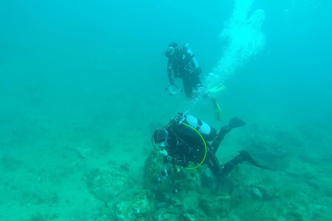 Sabbe plongée Escala mai 2014 (31)