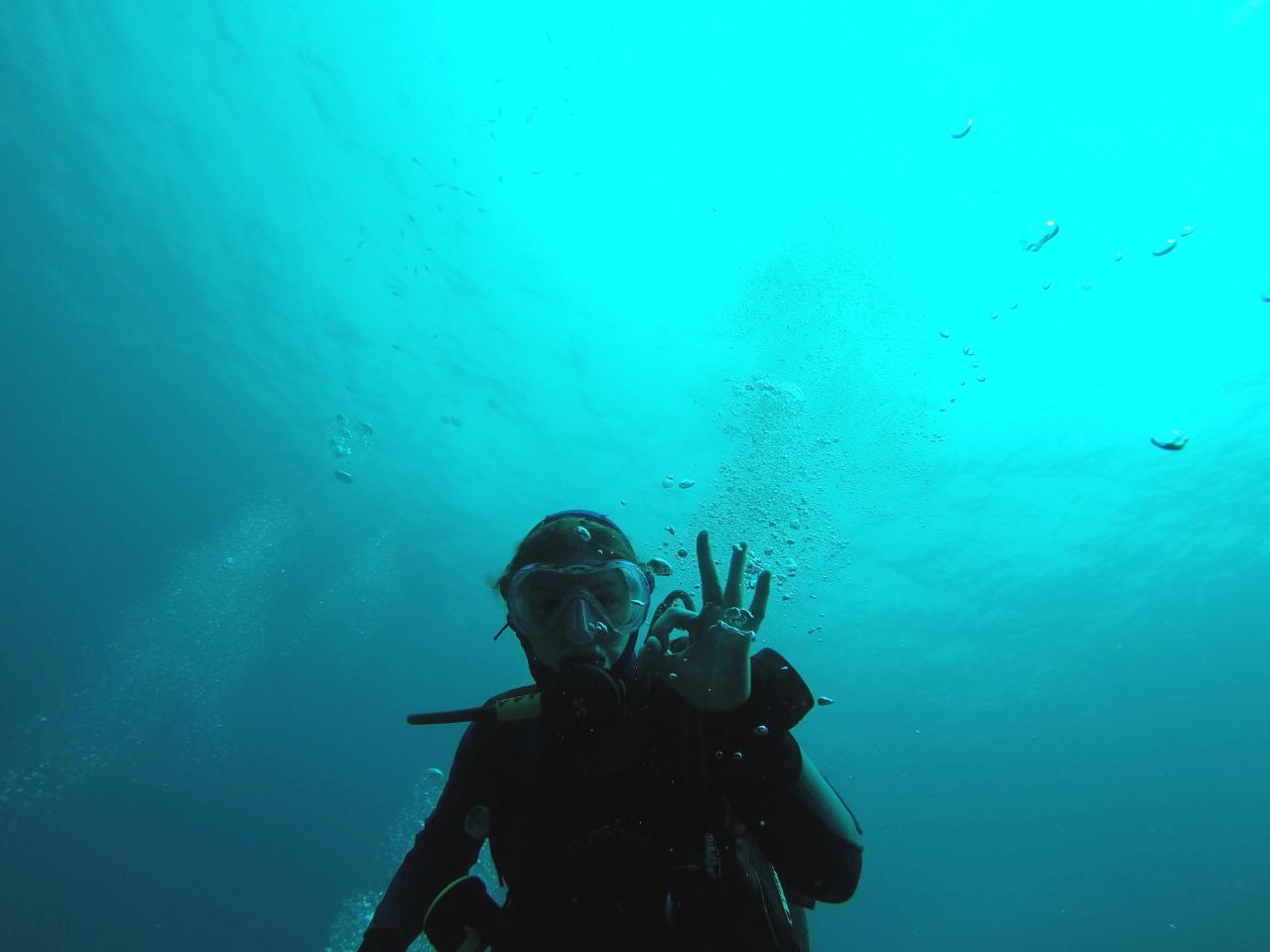 Sabbe plongée Escala mai 2014 (32)
