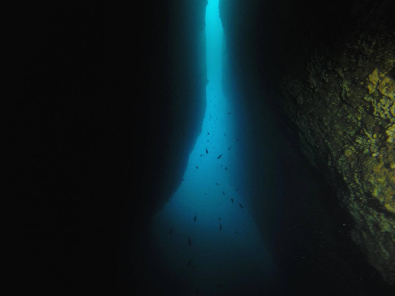 Sabbe plongée Escala mai 2014 (33)