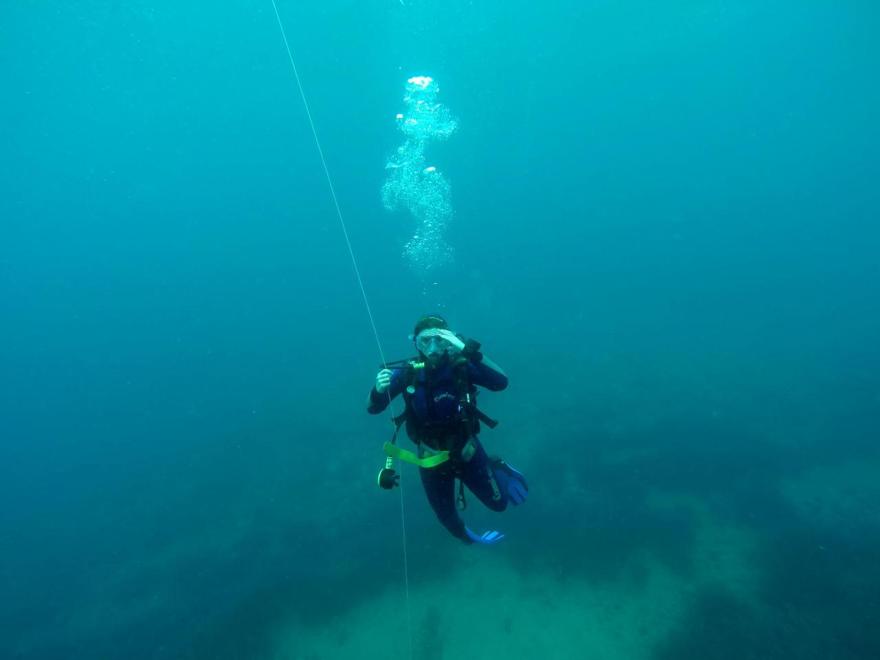 Sabbe plongée Escala mai 2014 (38)