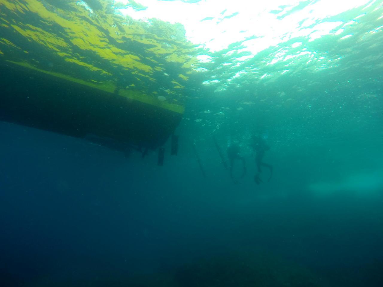 Sabbe plongée Escala mai 2014 (40)