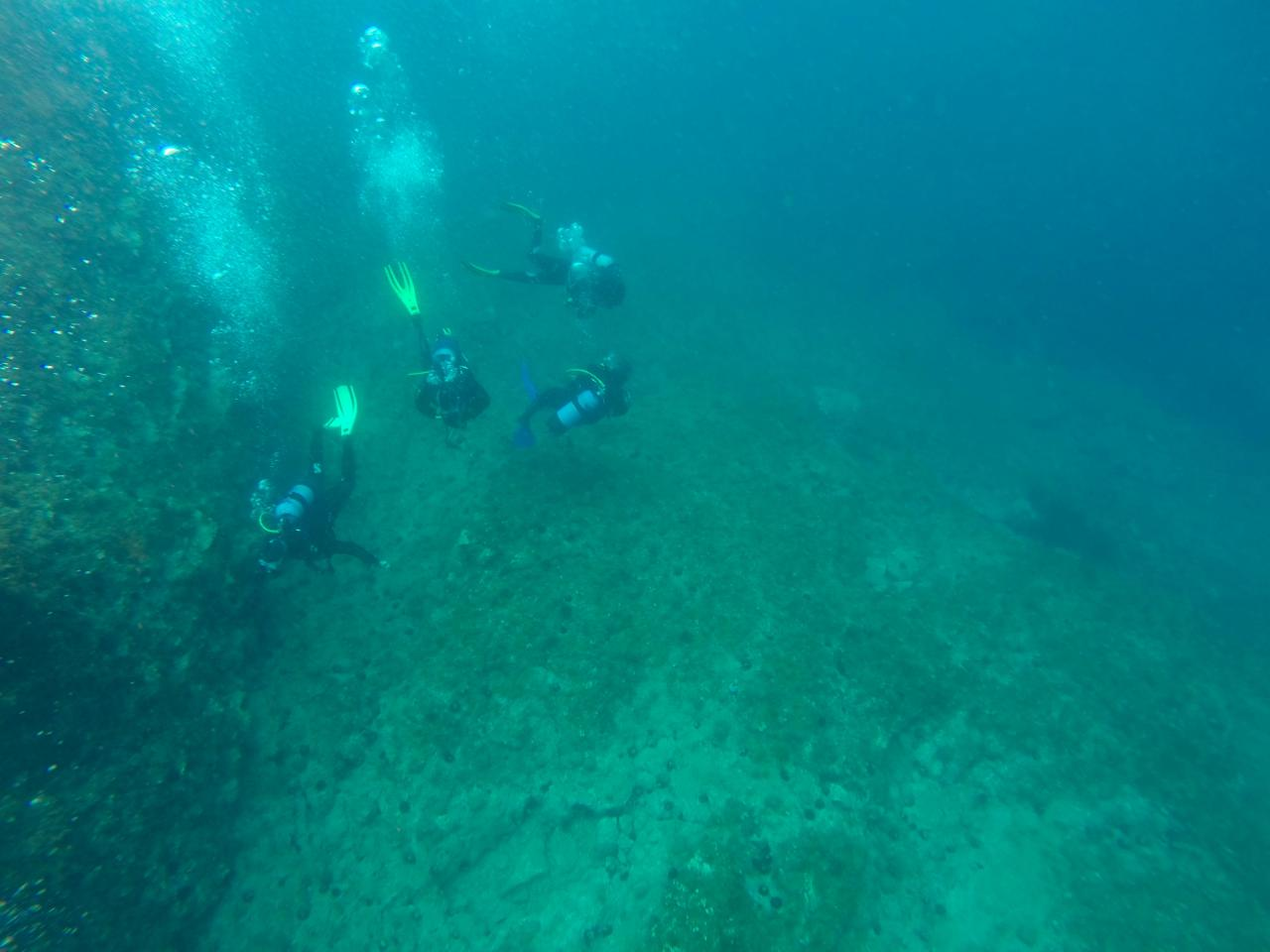 Sabbe plongée Escala mai 2014 (41)