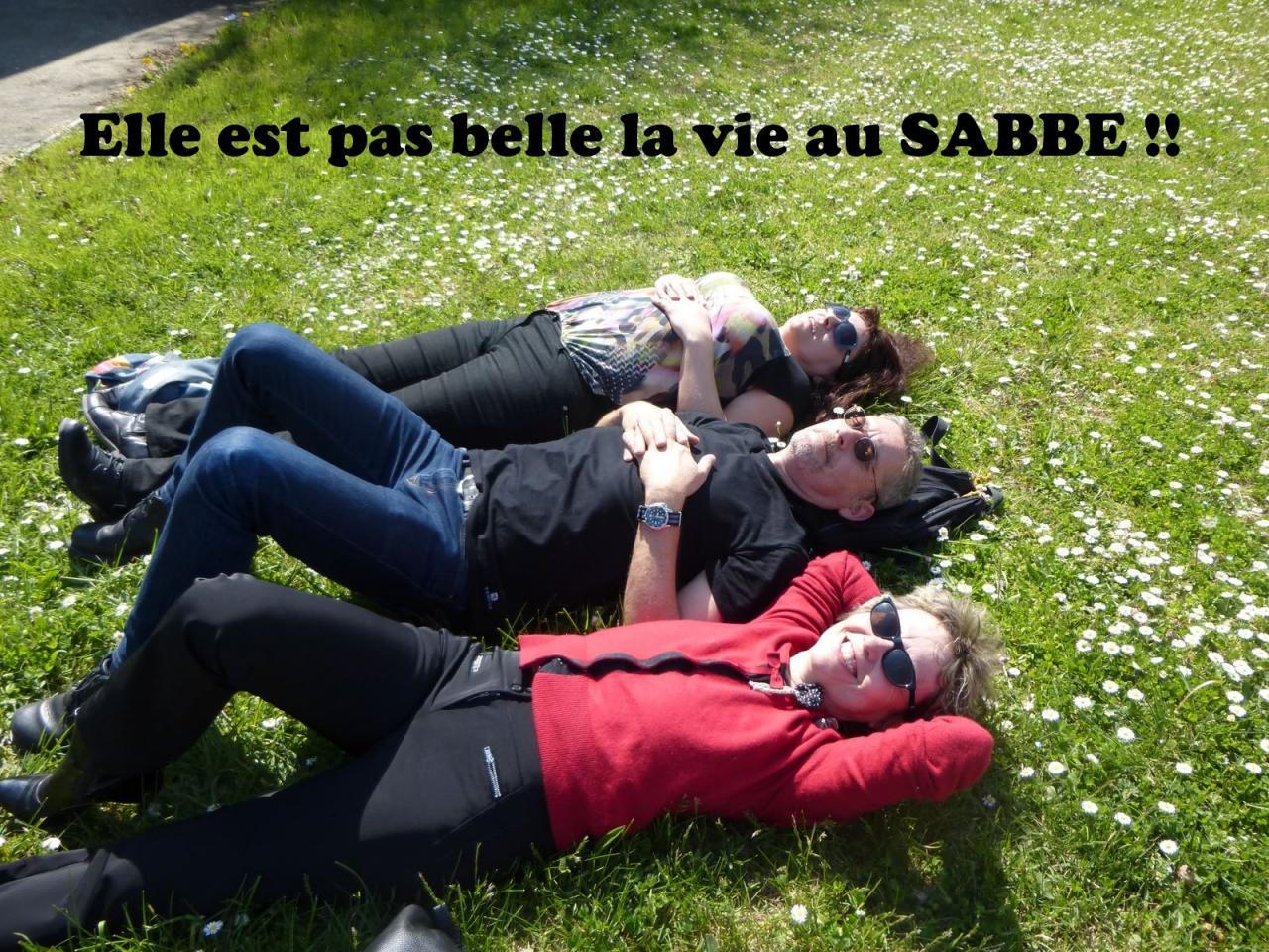 SABBE plongée Fosse Toulouse 2015 (2)