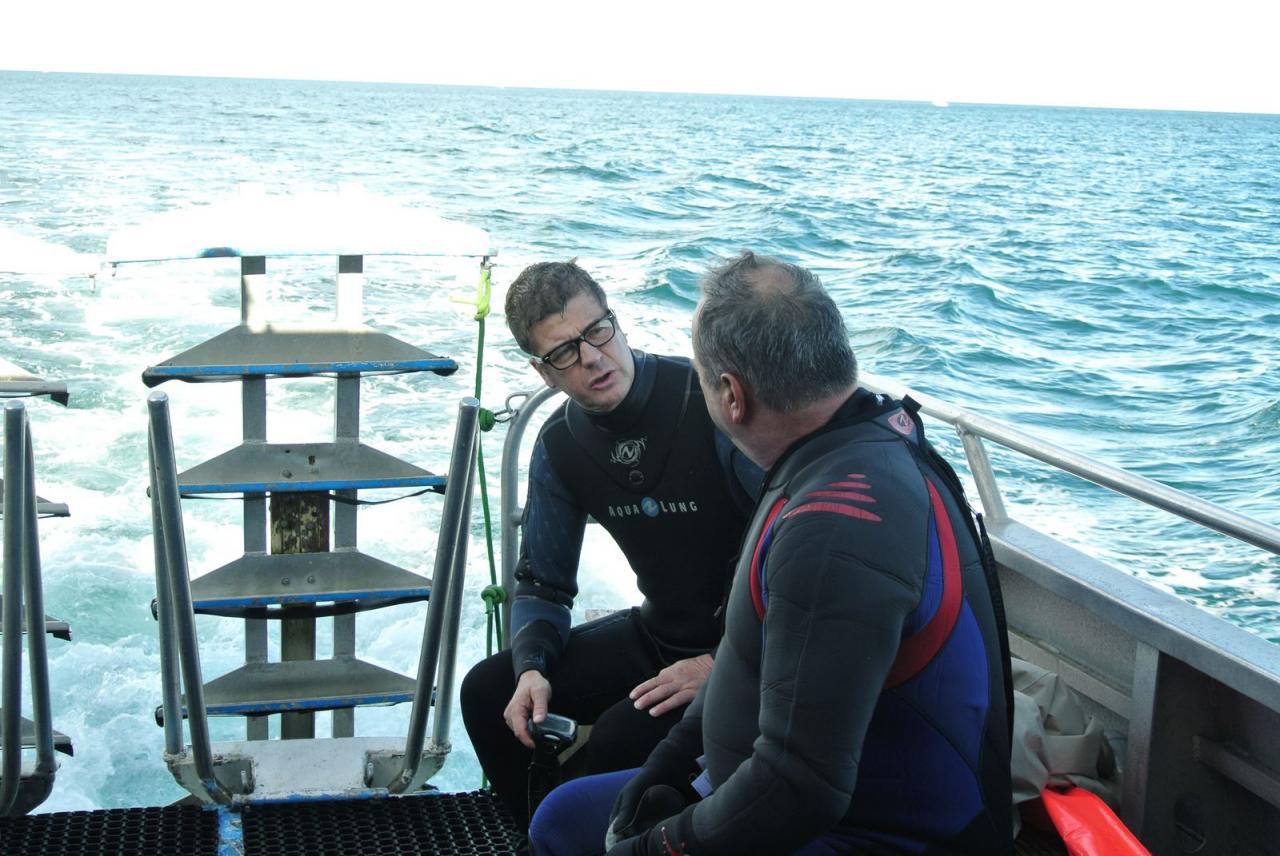 SABBE plongée Hendaye 201410 (11)