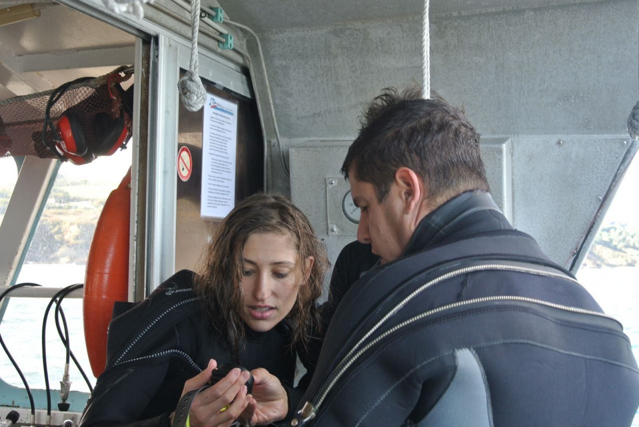 SABBE plongée Hendaye 201410 (12)