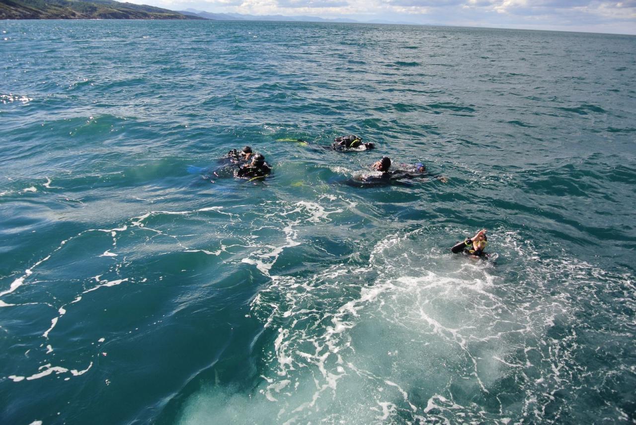 SABBE plongée Hendaye 201410 (28)