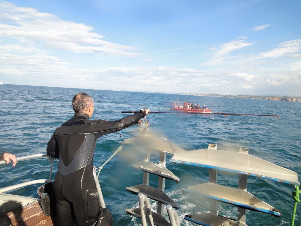 SABBE plongée Hendaye 201410 (44)