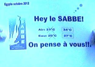 Sabbe47_201210_MF_Hurghada (13b)