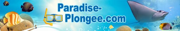 Paradise-plongée